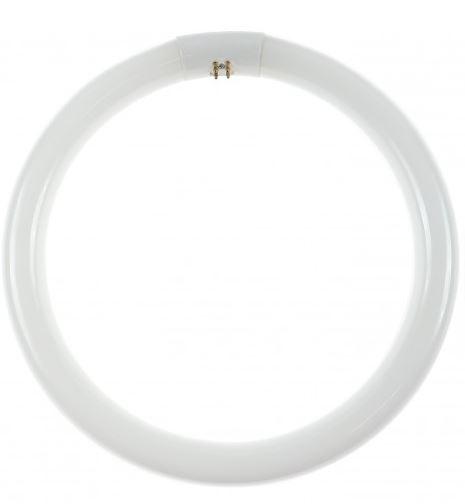 neon-circular